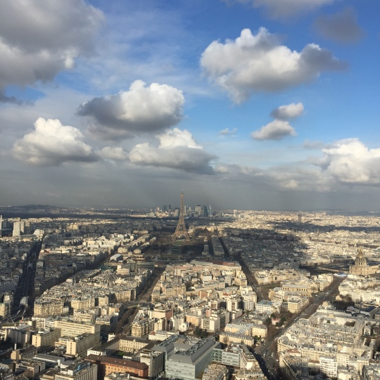From the Tour Montparnasse