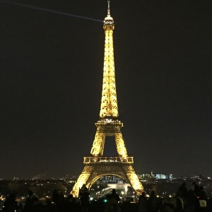 From the Trocadero at night